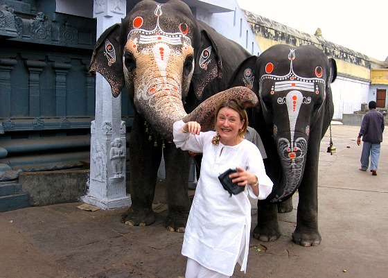Mariellen Ward at Kanchipuram Picture By: Breathedreamgo