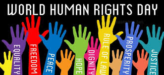 Human Rights SheThePeople Article