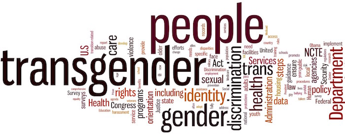 Transgender People Graphic Plate