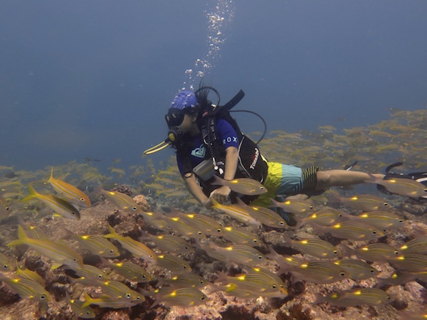 Exploring the underwater world. Picture Credit - Rucha Karkarey