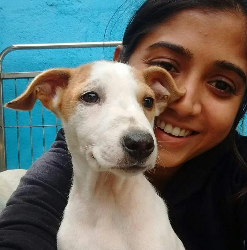 Osha Shetty, founder of the Cat Studio and a Centre Manager for CUPA Second Chance Adoption Centre, Bangalore