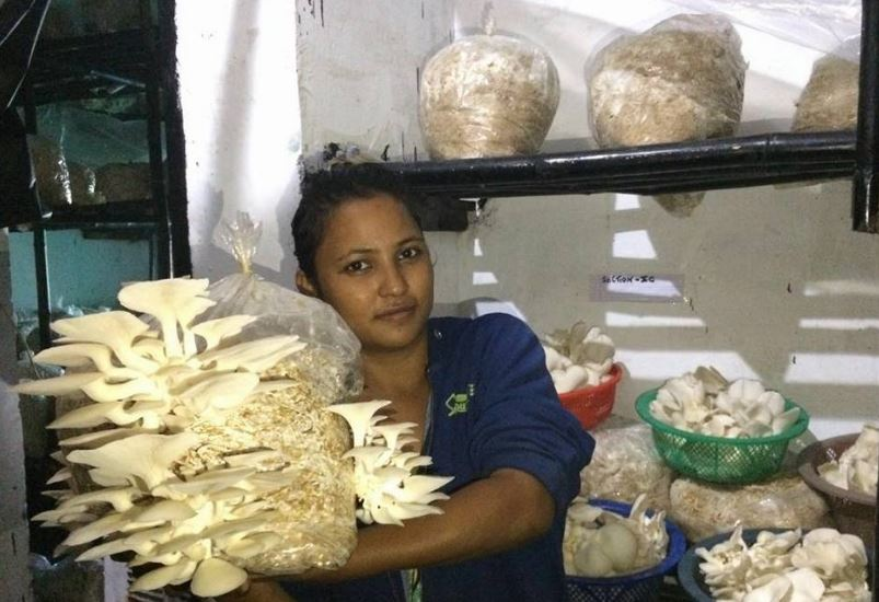 Divya Rawat Grows Mushrooms in Uttarakhand