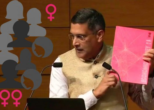 Pink Economic Survey India Women