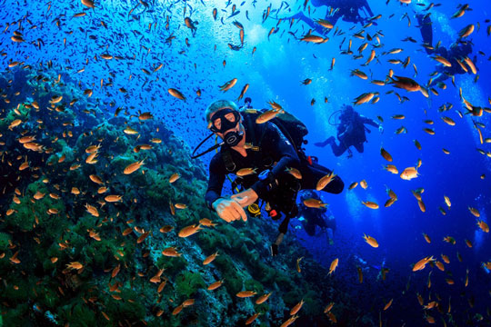 10 reasons why diving is therapy and thrill a must try