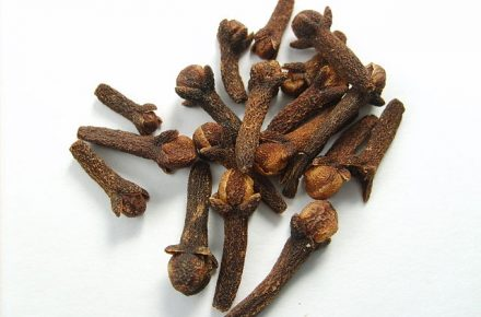 Oldest Clove