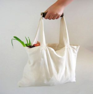Cloth bags for groceries