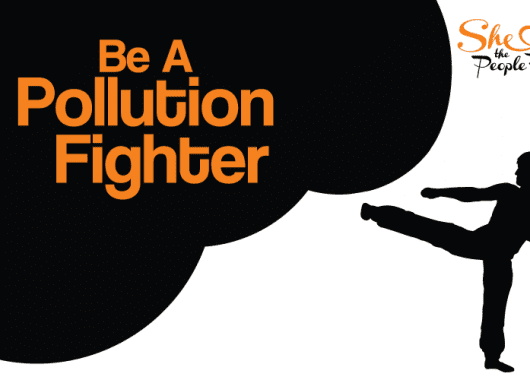 Pollution fighter