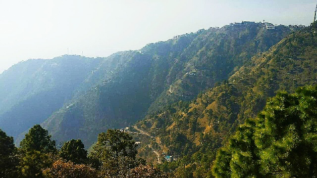View From The Suicide Point In Kasauli