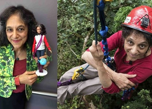 Barbie Indo-American Ecologist
