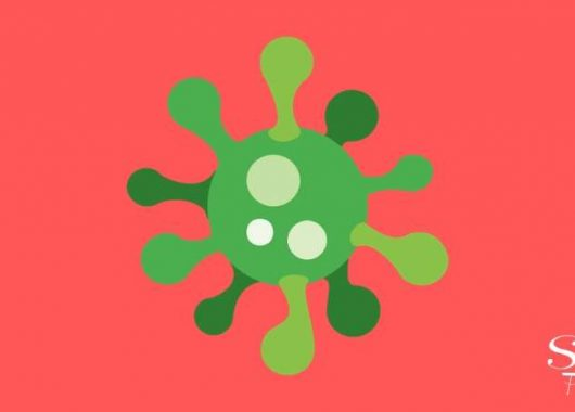 what-is-a-virus?-how-do-they-spread?-how-do-they-make-us-sick?