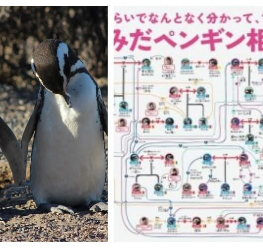 Penguins sexuality