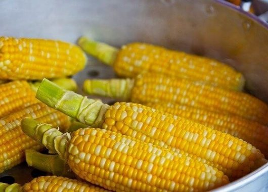 six-amazing-health-benefits-of-corn-that-you-must-know