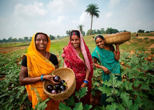 invisibilised-women-of-agriculture-and-how-the-farm-bills-add-to-their-woes