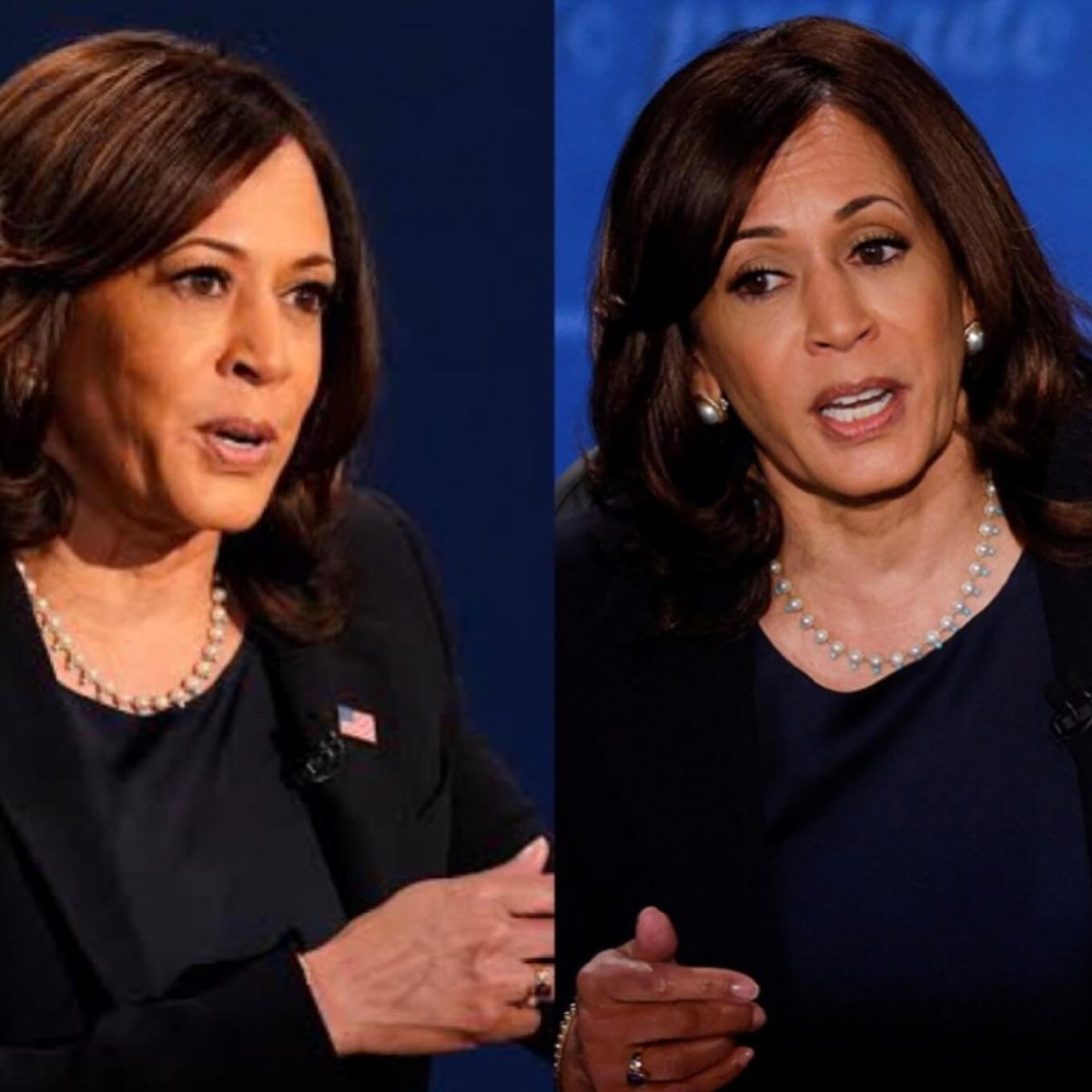 Kamala Harris Vice Presidential Debate , Kamala Harris feminist, Kamala Harris favourite Indian dishes